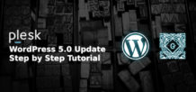 wordpress 5.0 launching