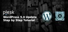 wordpress 5.0 launching